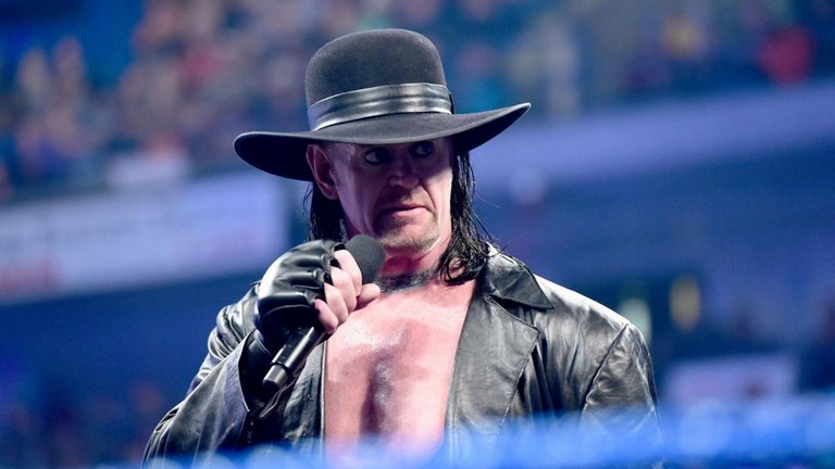 Big update on Undertaker's status with WWE
