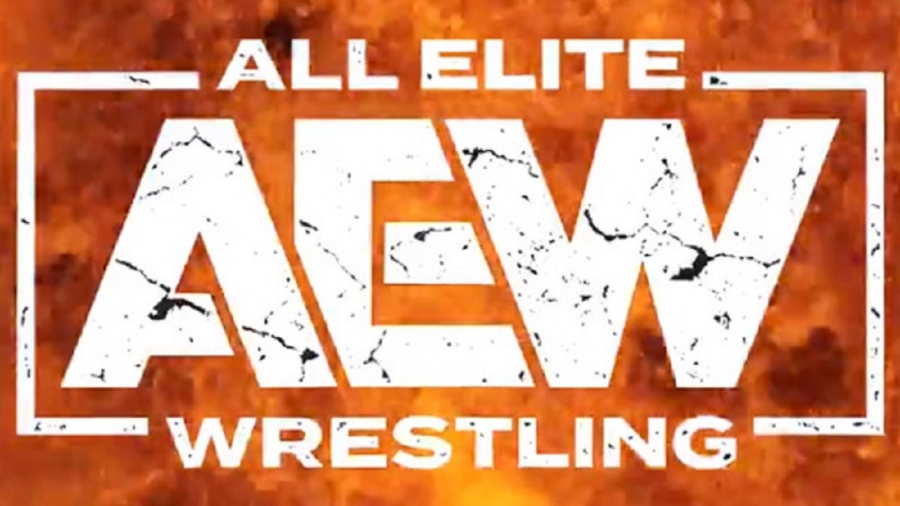 """AEW """"in the red"""" due to video game deal"""